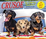 Crusoe the Celebrity Dachshund 2021 Box Calendar (Dog Breed Calendar)