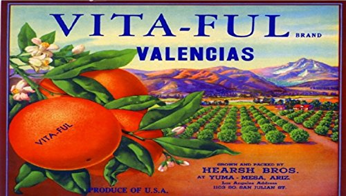 yuma-arizona-vita-ful-orange-citrus-fruit-crate-label-vintage-art-print