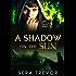 A Shadow on the Sun