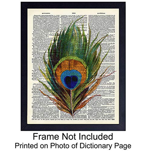 Upcycled Dictionary Wall Art Print - Vintage 8x10 Unframed Photo - Makes a Great Gift - Chic Home Decor - Peacock Feather (Picture Art Peacock)