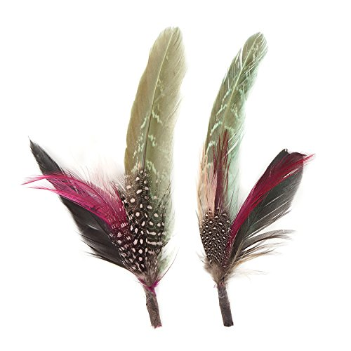 Millinery Trim (Zucker Feather (TM) - Pheasant-Hackle-Guinea Feather Hat Trims Champagne/Mint/Natural)