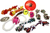 Dog Toy Bundle | Chew Ropes | Squeak Disc | Tug-O-War Pull Rope | Guaranteed | 3.5' Chain Leash | Tennis Ball Set | Teething Bones | Interactive Toys For Dogs | All Breeds | All Sizes | Dental Hygiene