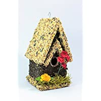 Handmade Edible Birdhouse- TALL LIGHT- Unique Reseedable Bird Feeder Wooden Birdhouse Covered w/ Birdseed- Made in USA!