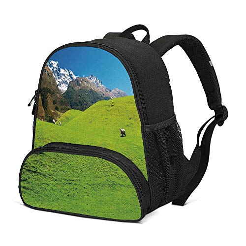 Nature Durable Kids Backpack,Idyllic Hills Mountain Land Farm New Zealand Snowy Peaks Spring Landscape for School Travel,10