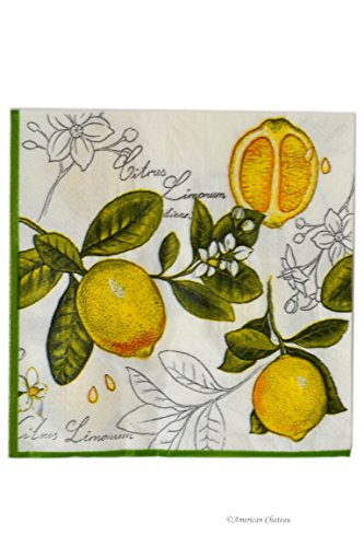 Set 80 Large 6.5'' Lunch Dinner Lemon Tree Blossom Cocktail Napkins by American Chateau