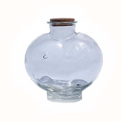 Botellas de cristal de DIY que desean la botella afortunada con los tapones de corcho fijados