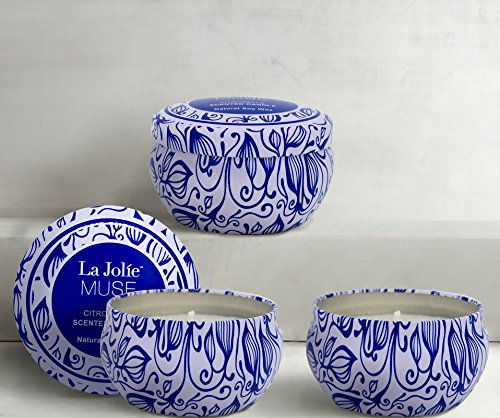 LA JOLIE MUSE Citronella Scented Candles Set 3 Natural Soy Wax Travel Tin 19.5oz, Outdoor and Indoor - ★ 【NATURAL CITRONELLA】 Infused with the oil of the citronella plant, this classic scent combines a top note of green citrus with a bottom note of fresh clean fragrance. ★ 【Indoor Use】 This eco pure soy scented candle has a beautiful scent throw that evaporates into the atmosphere, improving your living room creating instant ambiance. Take a sensory journey with LA JOLIE MUSE and let the carefully selected essential oils fill your space with a long lasting scent. ★ 【Outdoor Use】 Bring the ambience of a tranquil evening to your back garden or patio balcony with these simple yet stunning candles. Enjoy a clean and fragrant burnt time of up to 105 hours to be outside. - living-room-decor, living-room, candles - 510AEeLIOXL -