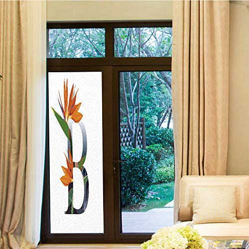 YOLIYANA Non-Toxic Window Film,Letter B,for Indoor & Outdoor Window,Letter B with Bird of Paradise Flower Alphabet,24
