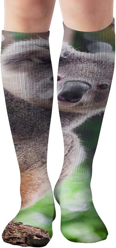 Koala Bear Cute Parks Outdoor Compression Socks Women And Men,Best For Nurses,Travel,Pregnancy,19.68 Inch