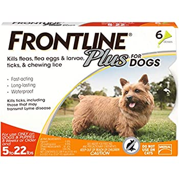 Compare flea and tick treatment for dogs