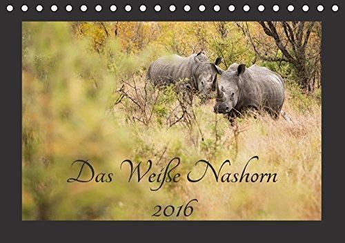 Das Weiße Nashorn (Tischkalender 2016 DIN A5 quer): Das Breitmaulnashorn, auch Weißes Nashorn genannt, ist eines unserer größten Landsäugetiere und ... (Monatskalender, 14 Seiten ) (CALVENDO Tiere)