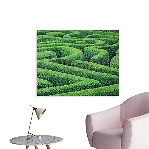 Anzhutwelve Garden Wallpaper Green Plant Maze Growth Ecology and Nature Theme Labyrinth Landscape Outdoors City Park The Office Poster Green W28 xL20 ()