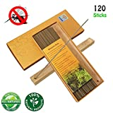 Panshi Premium Mosquito Repellent Sticks with Exclusive Holder,100% Natural Citronella and Aromatic, DEET Free,Non Toxic,Insect Bug Pest Incense Sticks for Indoor,Outdoor,Garden(120PCS)