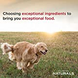 Diamond Naturals Adult Dry Dog Food Lamb Meal and