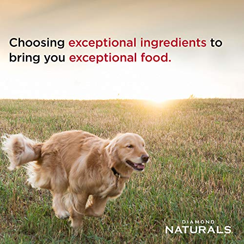 Diamond Naturals Skin & Coat Real Meat Recipe Natural Dry Dog Food with Wild Caught Salmon 30lb
