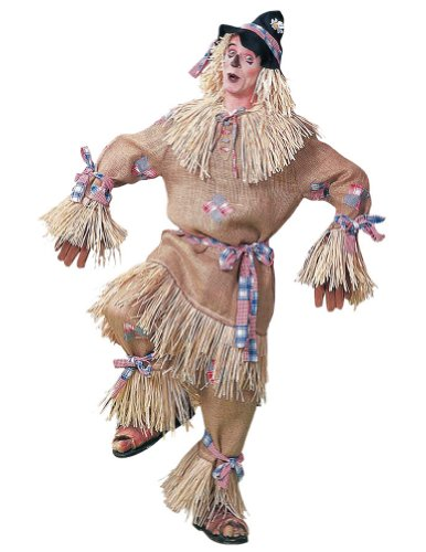 Scarecrow Adult Costume Deluxe One Sz -
