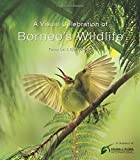 img - for A Visual Celebration of Borneo's Wildlife: [All Royalties Donated to Fauna & Flora International] book / textbook / text book