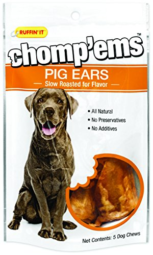 RHODE ISLAND TEXTILE, Treat Chews Pig Ear 5pk, EA