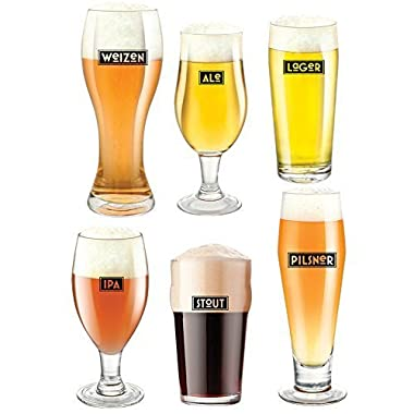 (Set/6) Variety Craft Beer Glasses Set - Lager Stout IPA Weizen Ale Pilsner