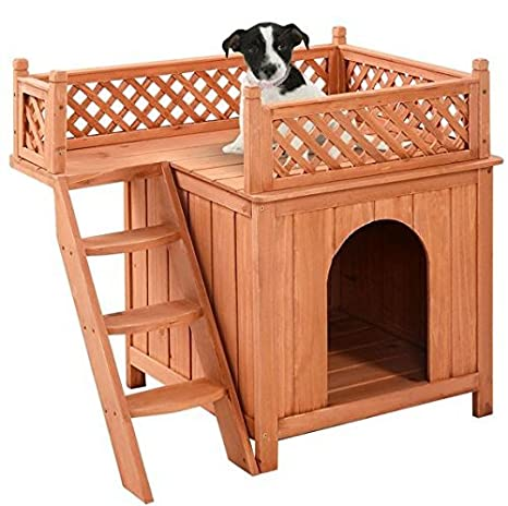 Amazon.com: K & Una Empresa casa de mascotas Cachorro de ...