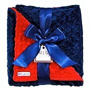 Meg Original Red & Navy Blue Minky Dot Blanket