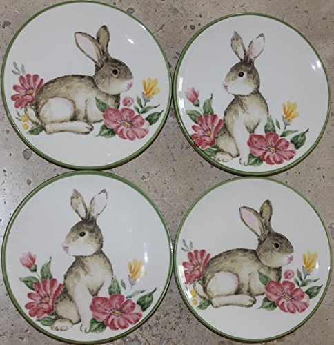 Maxcera Easter Bunny Canape/Dessert/Appetizer Plates - Set of 4 - 2 different designs 5-7/8