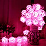 Avanti 20 Led Battery Operated String Romantic Flower Rose Fairy Light Lamp Outdoor for Valentine's Day, Wedding, Room, Garden, Christmass, Patio, Festival Party Decor (Hot Pink)
