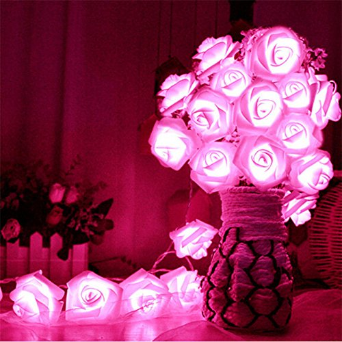 (Avanti 20 Led Battery Operated String Romantic Flower Rose Fairy Light Lamp Outdoor for Valentine's Day, Wedding, Room, Garden, Christmass, Patio, Festival Party Decor (Hot Pink))