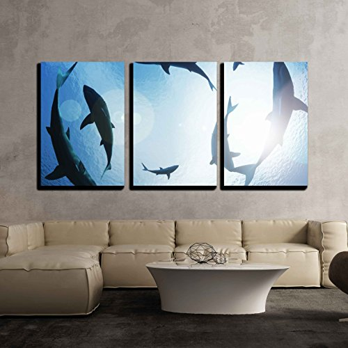 wall26 - 3 Piece Canvas Wall Art - School of Sharks Circling from above - Modern Home Decor Stretched and Framed Ready to Hang - 16