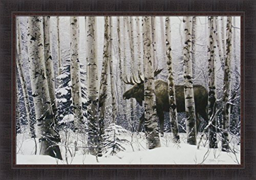 moose pictures - 9