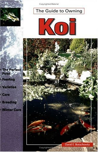 The Guide to Owning Koi