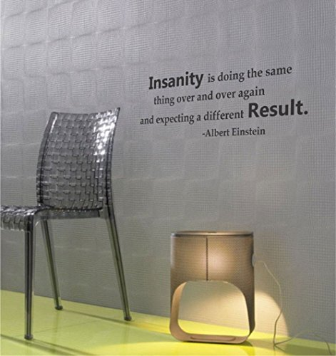Insanity is doing the same thing over and over again and expecting a different result. Albert Einstein Vinyl wall art Inspirational quotes and saying home decor decal sticker