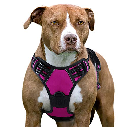 dog harness x large breed - 4