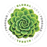 USPS Global Stamp: Green Succulent (2 Sheets (20 Stamps))