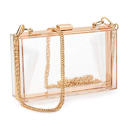 Just Fab Purses - Candy&liu Women Acrylic Clear Clutch Transparent