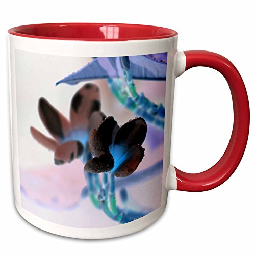 3dRose Susans Zoo Crew Photography Flowers - lei invert flower pastels - 15oz Two-Tone Red Mug (mug_184434_10) (Two Flower Tone Lei)