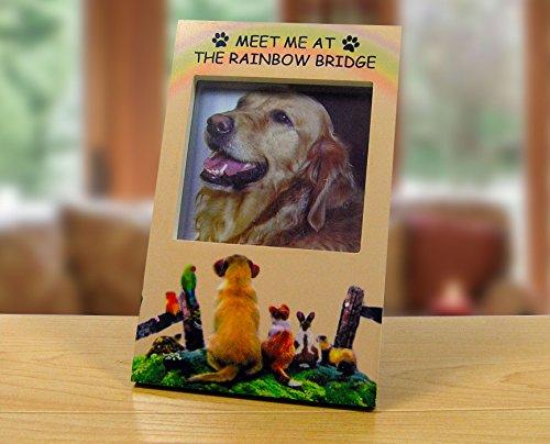 Rainbow Dogs Bridge (Banberry Designs Rainbow Bridge Memorial Frame - Pet Remembrance Picture Frame with Rainbow Bridge Saying - Loss of a Dog - Loss of a Cat)