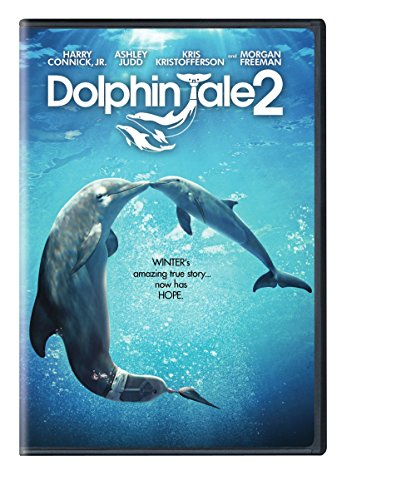 dolphin tale 2 movie - 2