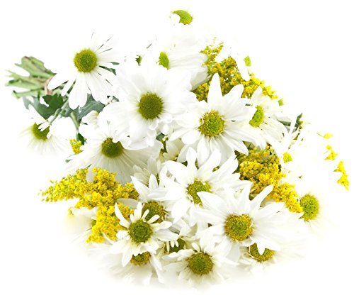 - Bouquet of Bountiful White Daisies: 10 White Daisy Poms and 5 Yellow Solidago Asters