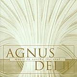 V 2: Agnus Dei
