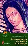 img - for de Peregrinacion a la Basilica de Guadalupe (Spanish Edition) book / textbook / text book