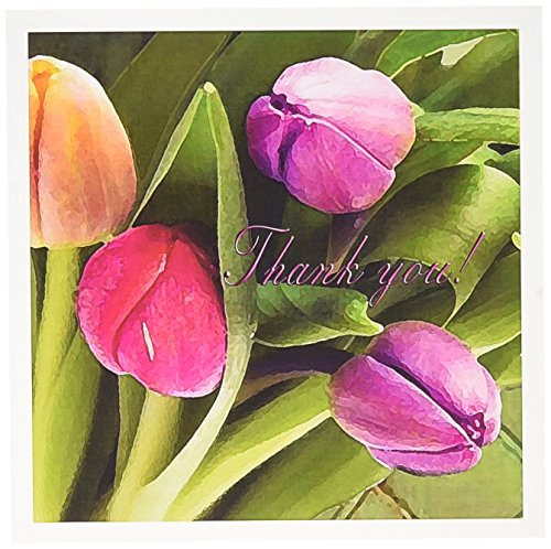 3dRose Tulips Thank you - Greeting Cards, 6 x 6 inches, set of 6 (gc_20177_1)