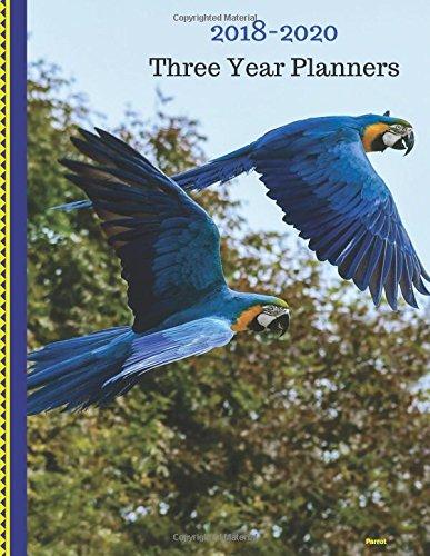 2018 - 2020 Three Year Planner: 2018-2020 Monthly Schedule ...