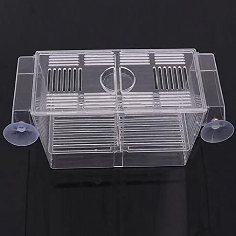 Homeofying Acuario Pecera Tanque Guppy Doble Crianza Rearing Trap Box Hatchery: Amazon.es: Productos para mascotas
