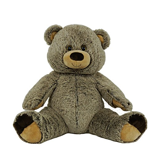 BEARegards Personalized Recordable message 15 Inch Talking Teddy Bear w/ 30 Seconds of Recording Time.