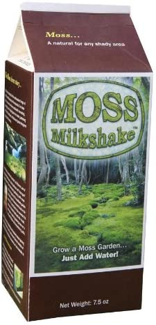 Amazon Com Plow Hearth Moss Milkshake Moss Growing Formula