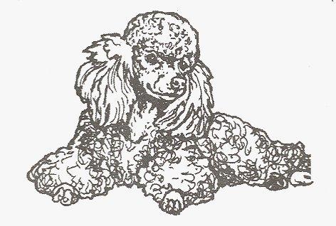 Dog Rubber Stamp - Poodle-16D (Size: 2