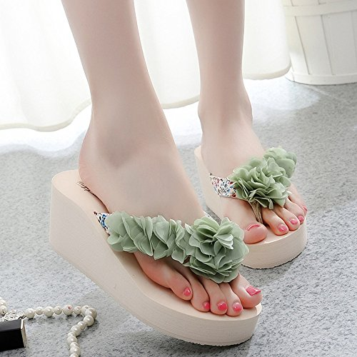FEI Mules Fashion slippers Female high heels Beach shoes Sandals with 5 colors for 18-40 years old Sandals Casual (Color : 1004, Size : 39) 1005