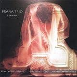 Pranam by Prana Trio (2013-05-03)
