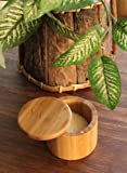 """Totally Bamboo Salt Box, """"Salt"""", Etched 100% Bamboo Container w/ Magnetic Lid For Secure Strong Storage Spices, Herbs, Seasoning & MORE!"""